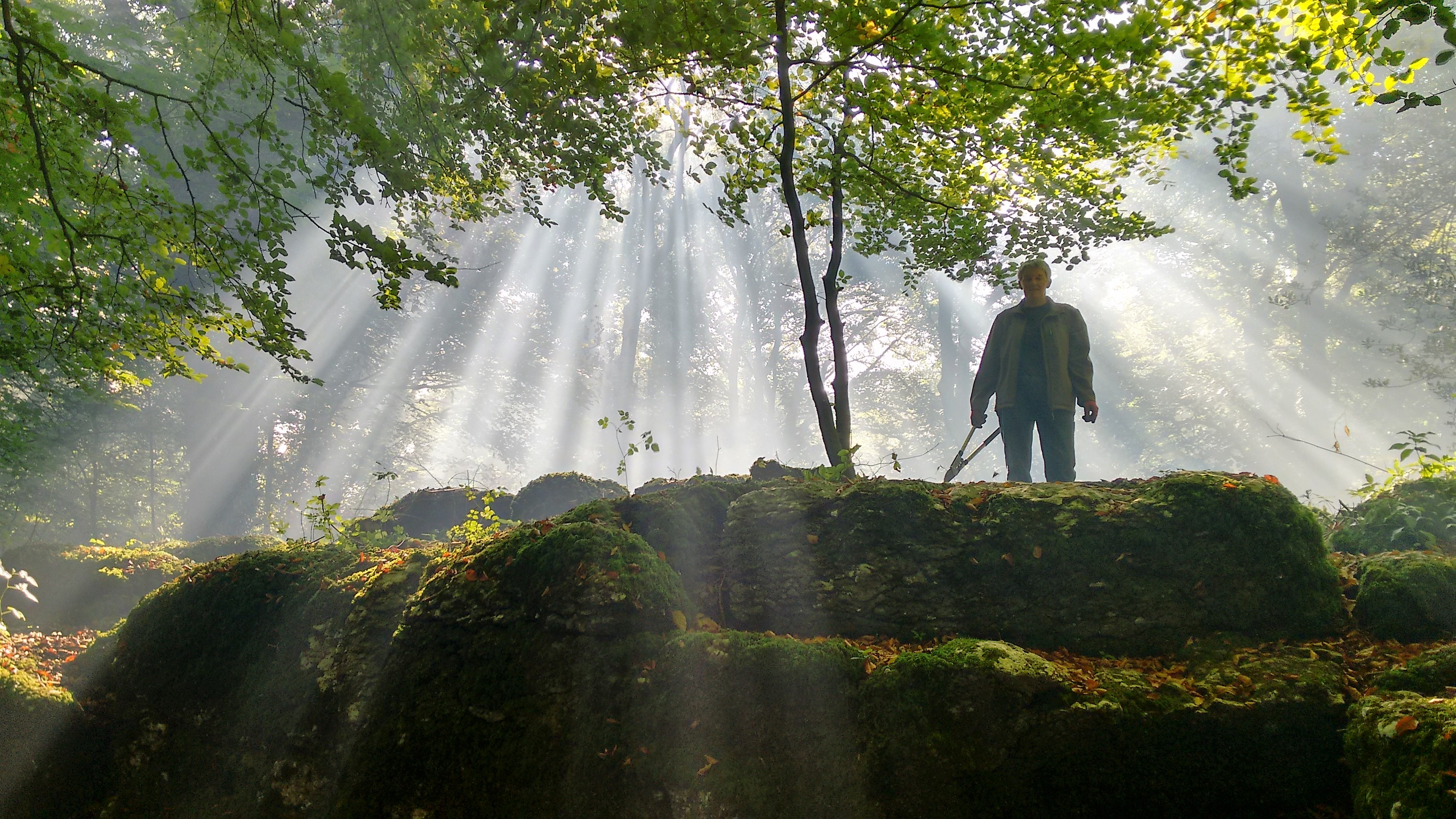 kendal woods